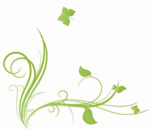 tervisetooted, loodustooted